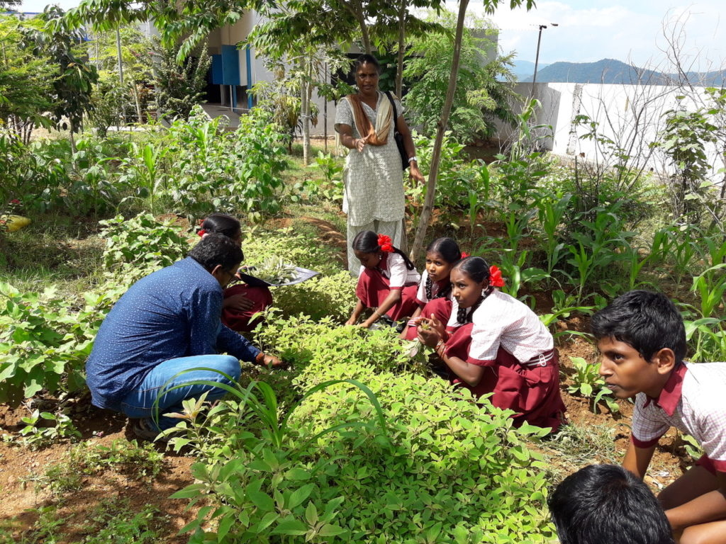 Guru Krupa Foundation Renews Anisha Kitchen Garden Project Susila